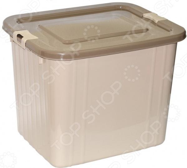Ящик для хранения Violet 1760 цин вэй прозрачный ящик для обуви толстый ящик сочетание из пластиковых ящик для хранения женских моделей 6 загружен синий