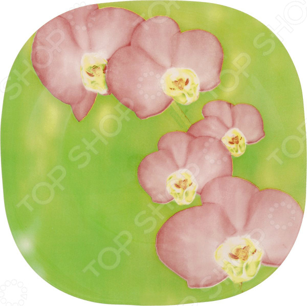 Тарелка десертная Luminarc Erine