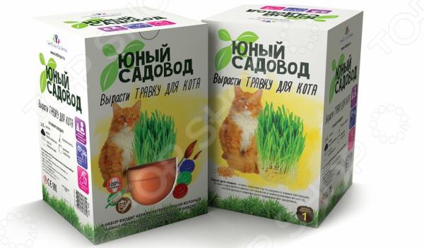 Набор для выращивания Юный Садовод «Вырасти травку для кота» наборы для выращивания растений вырасти дерево набор для выращивания ель канадская голубая