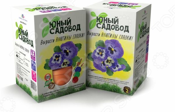 Набор для выращивания Юный Садовод «Вырасти Анютины глазки» наборы для выращивания растений вырасти дерево набор для выращивания ель канадская голубая
