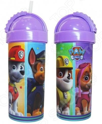 Бутылочка детская Disney Paw Patrol PPF400-01