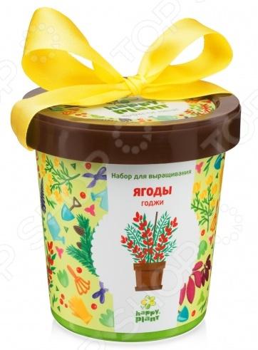 Набор для выращивания Happy Plant «Горшок. Ягоды Годжи» гель гиалуроновый ягоды годжи dnc гель гиалуроновый ягоды годжи