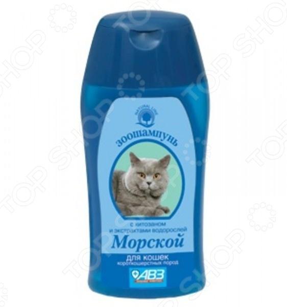 Шампунь для короткошерстных кошек Агроветзащита «Морской» АВ864 хитозан тяньши в омске
