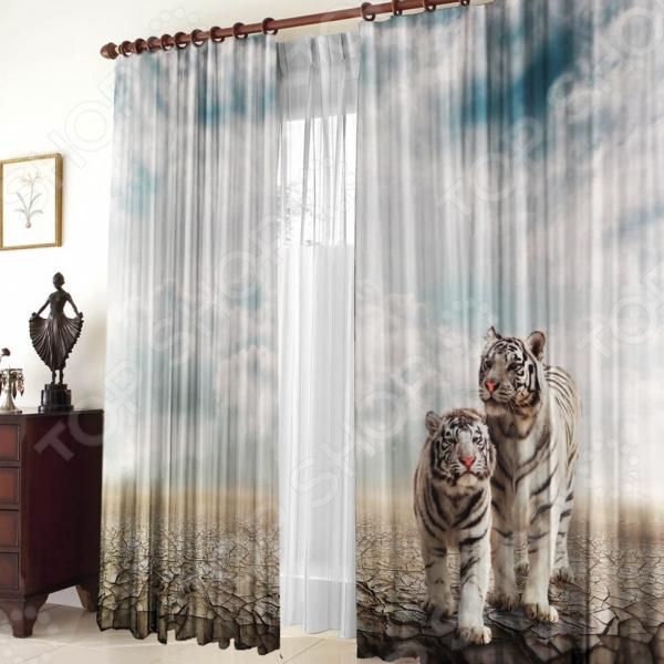 Фото - Фотошторы Zlata Korunka «Белые тигры» шторы zlata korunka шторы с ламбрекеном amey