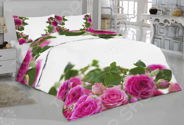 Комплект постельного белья ТамиТекс «Муза» комплект постельного белья двуспальный tango twill 57 50
