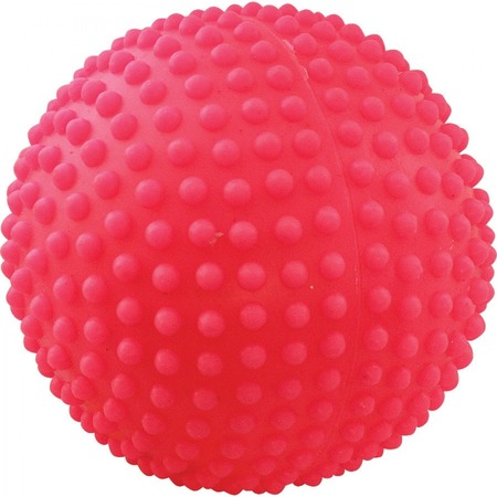 Купить Игрушка для собак ЗООНИК «Мяч игольчатый». В ассортименте