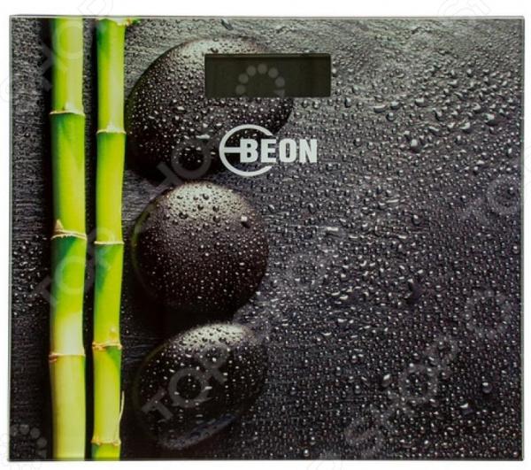Весы BEON BN-109