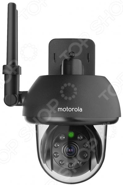 Фото - IP-видеоняня Motorola Focus 73 видео