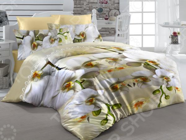 Zakazat.ru: Комплект постельного белья ТамиТекс «Ароматный мир». 1,5-спальный