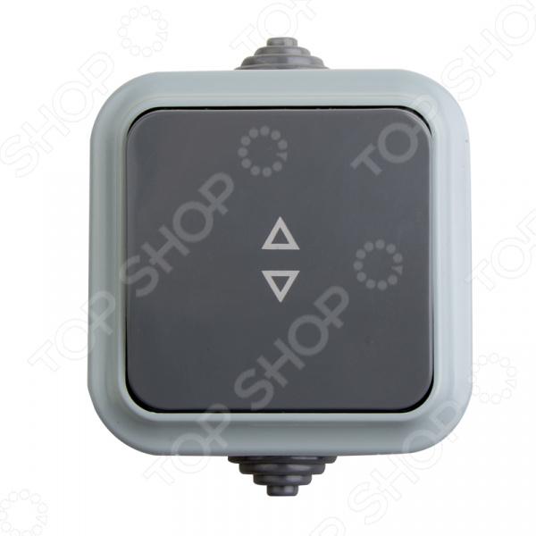 Переключатель влагозащищенный на два направления Rexant 78-0522 светильник для бани влагозащищенный термостойкий ip54