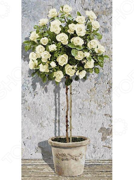 Набор для рисования по номерам Schipper «Дерево белых роз»