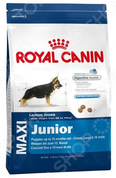 Корм сухой для щенков крупных пород Royal Canin Maxi Junior