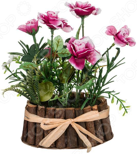 Декоративные цветы 70-532 куплю декоративные растения в севастополе