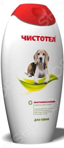 Шампунь для собак Чистотел восстанавливающий идеальный шампунь для вашего любимого питомца. Благодаря входящему в состав алоэ вера, средство оказывает заживляющий эффект. А витамин E способствует питанию и увлажнению кожи. Действующее вещество - перметрин 0,4 . Шампунь не раздражает слизистую оболочку, а провитамин B5 укрепляет шерсть, предотвращая ее выпадение. Эффект будет значительнее, если после нанесения средства оставить его на несколько минут. После смывания тщательно просушите и расчешите шерсть. Рекомендуется хранить средство в темном сухом месте при температуре 0-30 градусов.