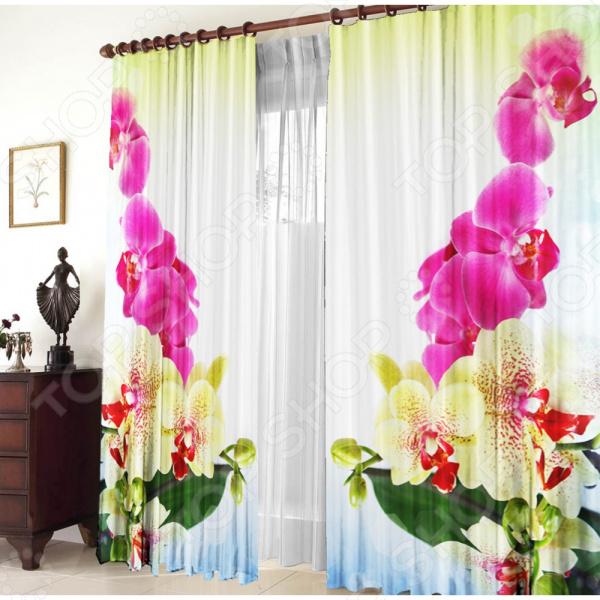 Фотошторы Zlata Korunka «Тигровая орхидея»