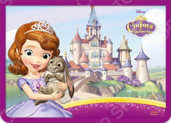 Папка для тетрадей Disney на молнии A4 «София»
