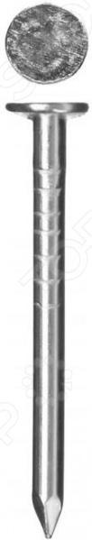 Набор гвоздей толевых Зубр ГОСТ 4029-63