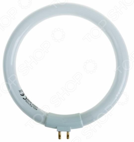 Лампа для лупы Rexant 8092 цена и фото