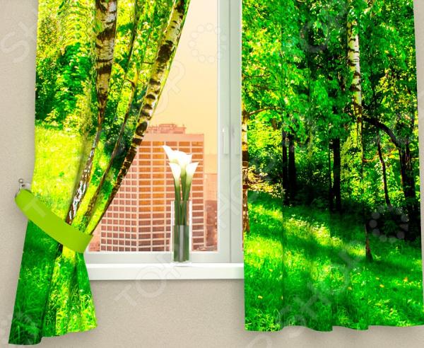 Фотошторы Сирень «Сочные краски леса»