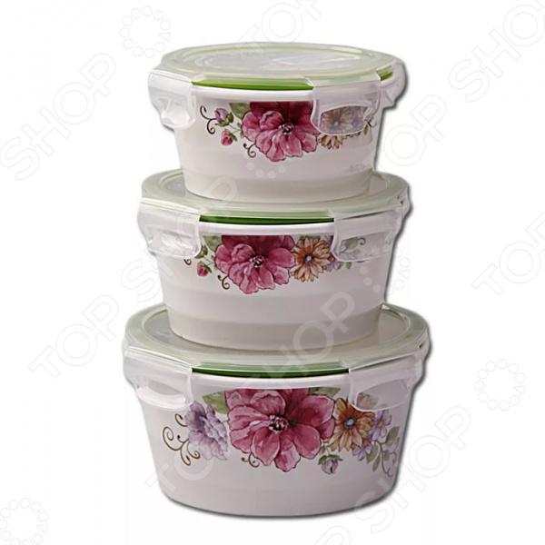Набор контейнеров для продуктов Patricia IM99-5287 емкости неполимерные patricia банка 17 см шт