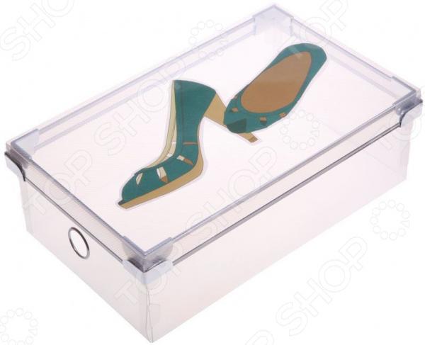 Короб для хранения обуви Miolla PB-005