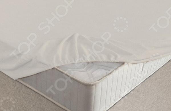 Простыня на резинке Ecotex махровая. Цвет: молочный