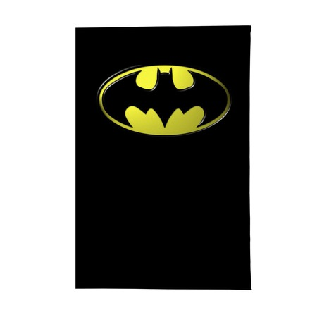 Купить Обложка для паспорта Mitya Veselkov «Бэтмен»