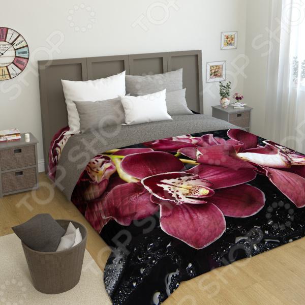 Фотопокрывало стеганое Сирень «Распустившаяся орхидея»