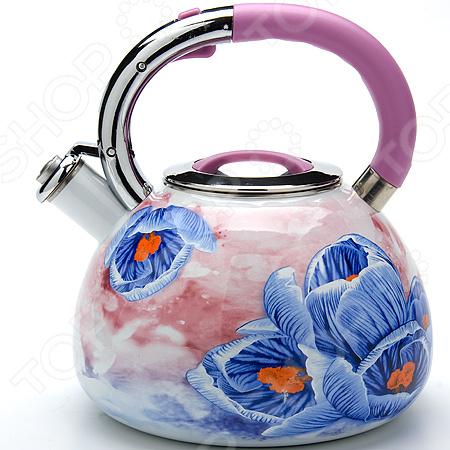 Чайник со свистком Mayer&Boch MB-23850