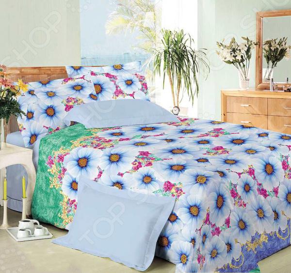 Комплект постельного белья Королевское Искушение «Ностальгия». 2-спальный