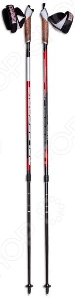 Палки для скандинавской ходьбы Masters Telescopic 01N0916