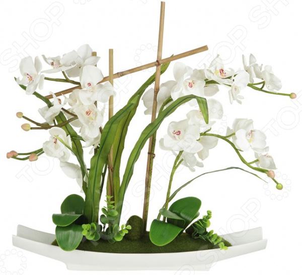 Декоративные цветы Dream Garden «Орхидея белая» на подставке куплю декоративные растения в севастополе