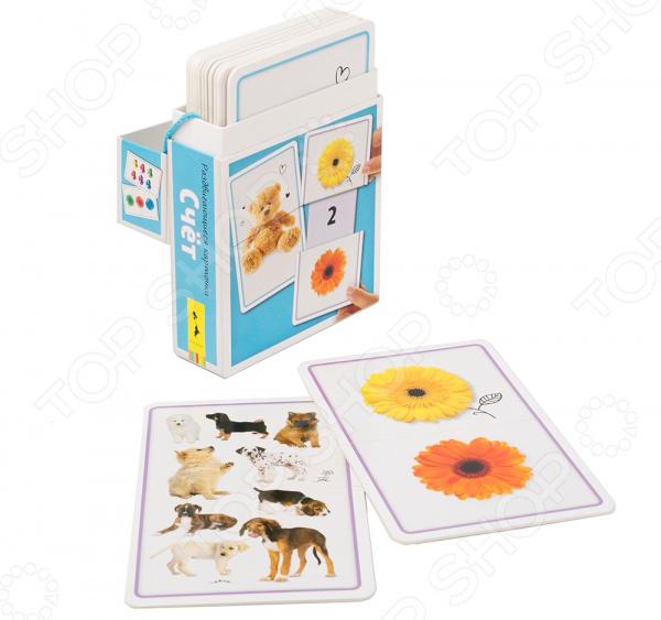 Набор развивающих карточек Росмэн «Счет»
