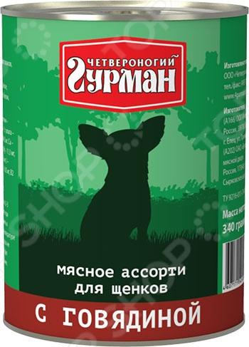 Корм консервированный для щенков Четвероногий Гурман «Мясное ассорти с говядиной» туба космическое питание мясное пюре 165г