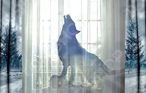 Комплект фотоштор с тюлем ТамиТекс «Лунная волчица» 2