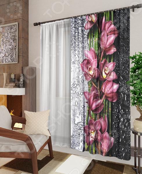 Комплект: фотоштора и тюль ТамиТекс «Орхидея на стекле» фотоштора tomdom фотошторы белая орхидея