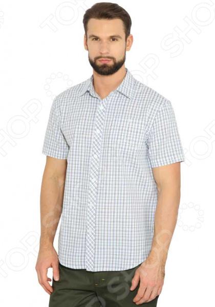 Рубашка Finn Flare B17-42016. Цвет: лаймовый