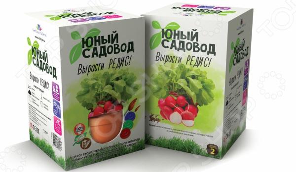 Набор для выращивания Юный Садовод «Вырасти редис» наборы для выращивания растений вырасти дерево набор для выращивания ель канадская голубая