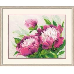 Набор для вышивания Riolis Premium «Розовые пионы»
