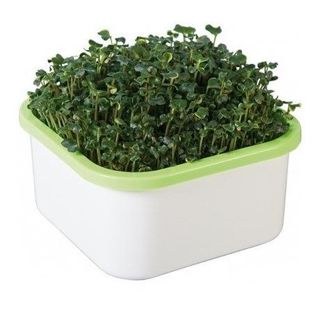 Купить Проращиватель Здоровья клад для микрозелени