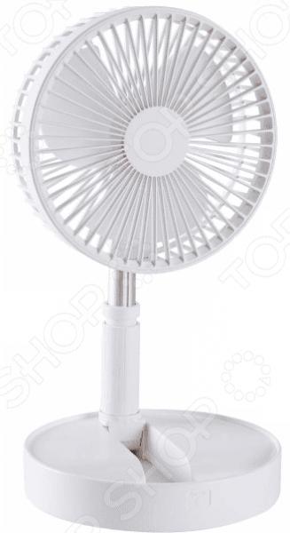 Вентилятор настольный Ricotio 1746859