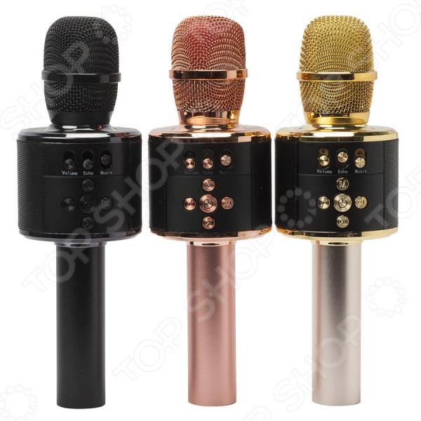 Микрофон для караоке MD-01