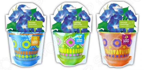 Набор для выращивания Happy Plant «Ипомея красотка». В ассортименте