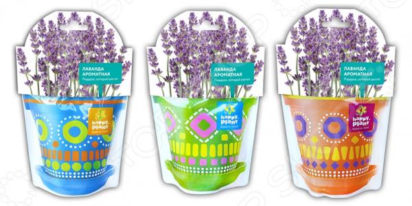 Набор для выращивания Happy Plant «Лаванда ароматная» набор для опытов и экспериментов happy plant лаванда ароматная
