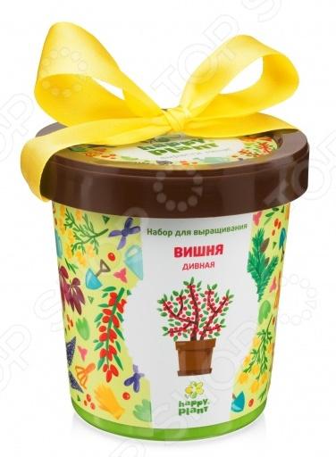 Набор для выращивания Happy Plant «Горшок. Вишня дивная» набор для опытов и экспериментов happy plant горшок вишня дивная