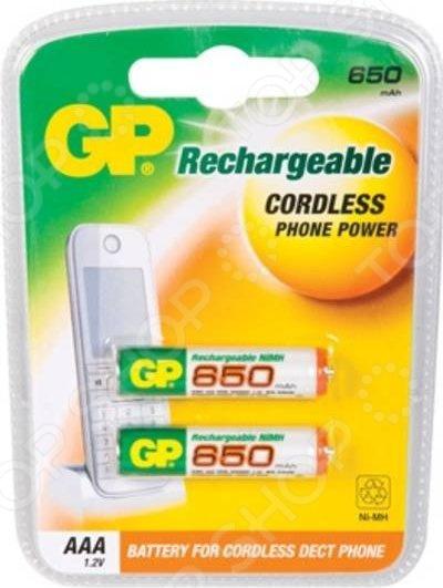 Набор батареек аккумуляторных GP Batteries 65AAAHC-2DECRC2 gp 65aaahc uc2