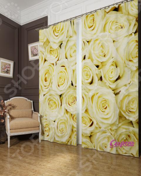 Фотошторы блэкаут Сирень «Кремовые розы» 03795