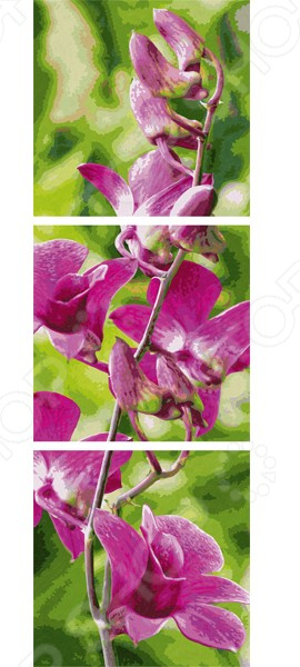 Фото - Набор для рисования по номерам Schipper «Триптих. Орхидеи» schipper раскраска по номерам триптих орхидеи