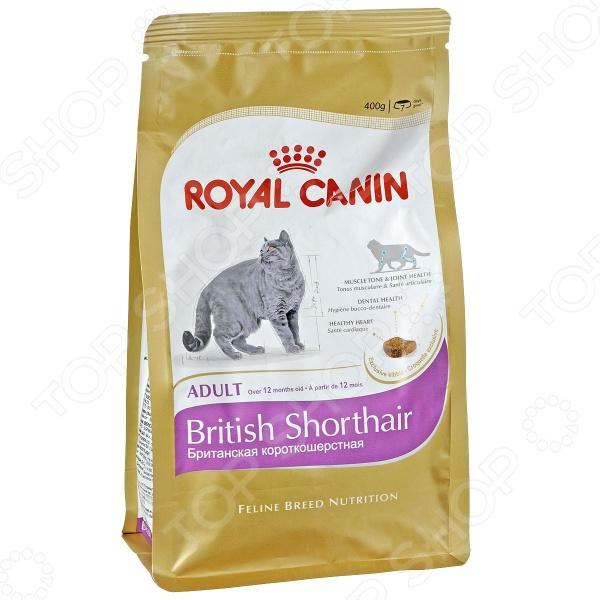 Корм сухой для британских короткошерстных кошек Royal Canin Adult British Shorthair