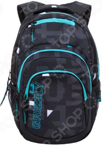 Рюкзак молодежный Grizzly RU-704-2/4